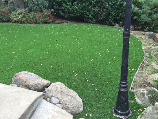 Artificial Grass Sunrise Manor Nevada  Landscape artificial grass
