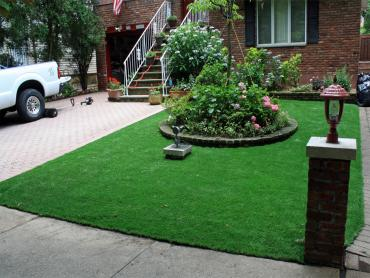 Artificial Turf Pahrump Nevada  Landscape artificial grass
