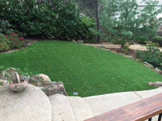 Artificial Turf Searchlight Nevada  Landscape artificial grass