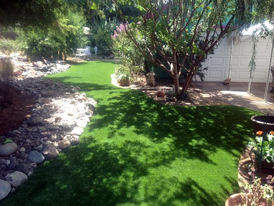 Artificial Turf Winchester Nevada Lawn artificial grass