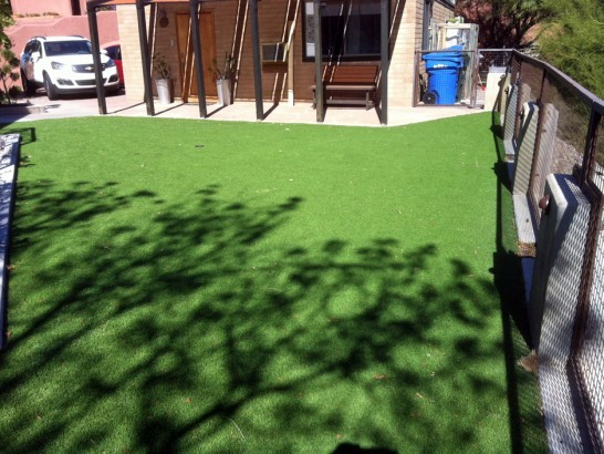 Fake Grass Cal-Nev-Ari Nevada  Landscape artificial grass
