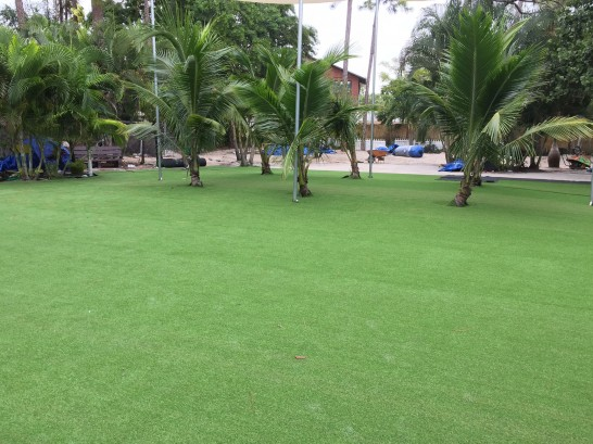 Fake Grass Carpet Laughlin, Nevada Landscaping, Commercial Landscape artificial grass