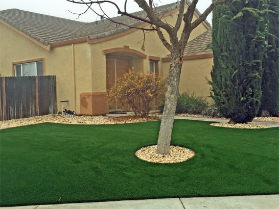 Fake Grass Nellis Air Force Base Nevada  Landscape artificial grass