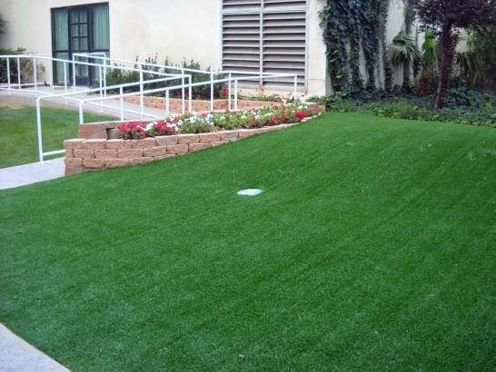 Golf Putting Greens Henderson Nevada Artificial Grass artificial grass