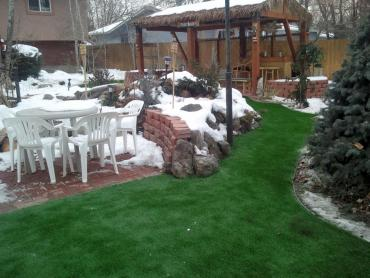 Synthetic Grass Mount Charleston Nevada  Landscape artificial grass
