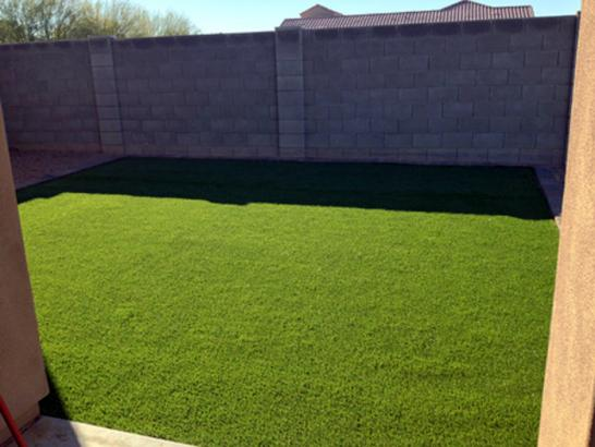 Synthetic Grass Nellis Air Force Base Nevada  Landscape artificial grass