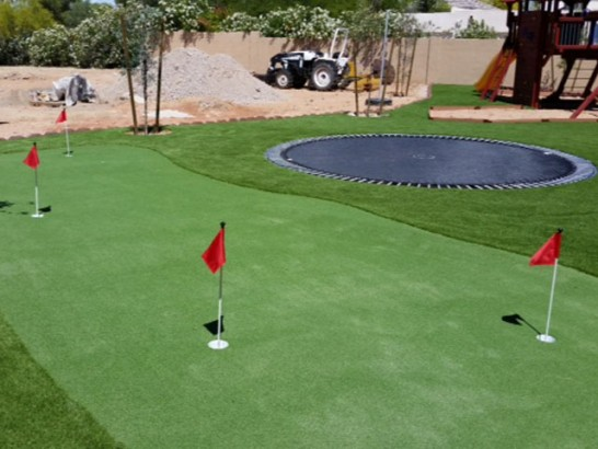 Turf Grass Silver Peak, Nevada Putting Green Grass, Backyards artificial grass
